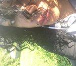 Fotografia de Alicriss, Chica de 32 años