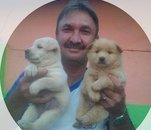 Fotografia de italo56, Chico de 55 años